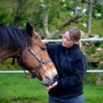 cheval propriétaire relation