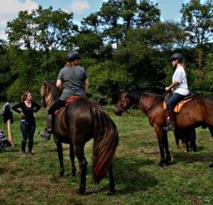 Stage d'équitation centrée
